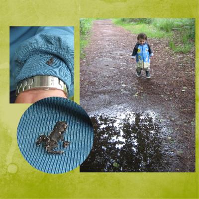 Blog de chipiron :Un chipiron dans les Landes, Quand il pleut