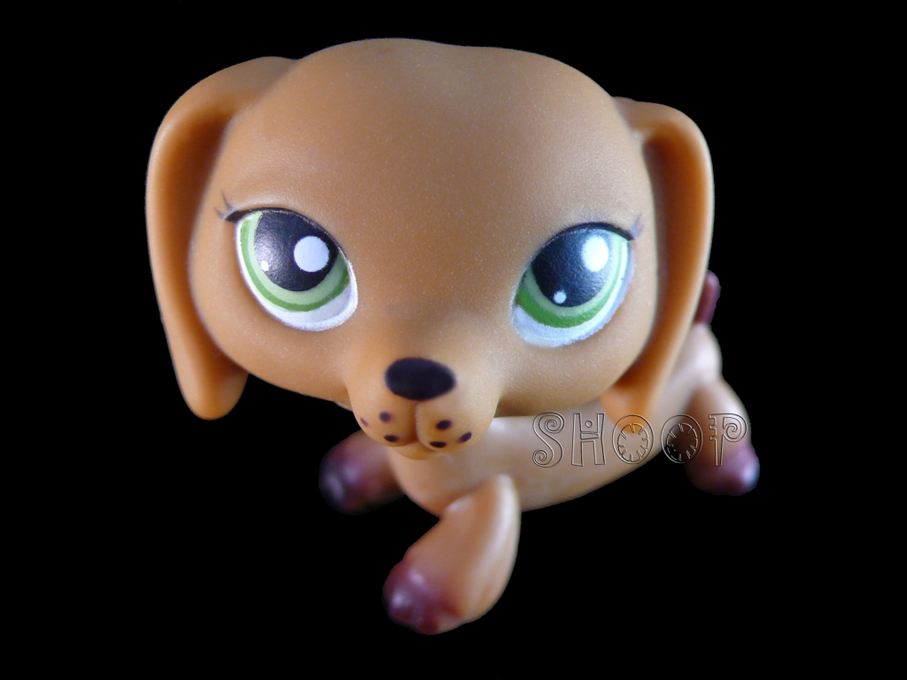 LPS 139 / 307