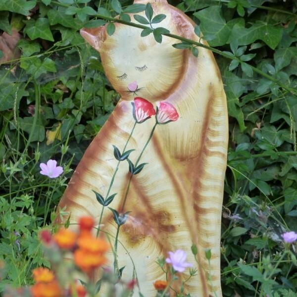 chat-roux-herbes-folles---juin-2014---plan-3--800x800-.jpg