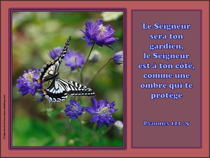 Le Seigneur sera ton gardien, le Seigneur est à ton côté - Psaumes 121 : 5