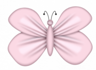 Papillons,insectes