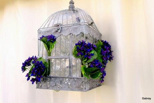 La fête de la violette !