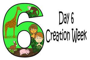 6_ jour 6 semaine de création
