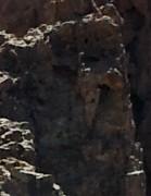 La Page de Marsouin3