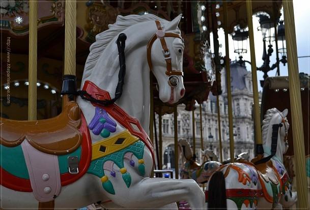 Les chevaux de l'Hôtel de Ville 6