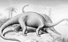 brontosaure.jpg