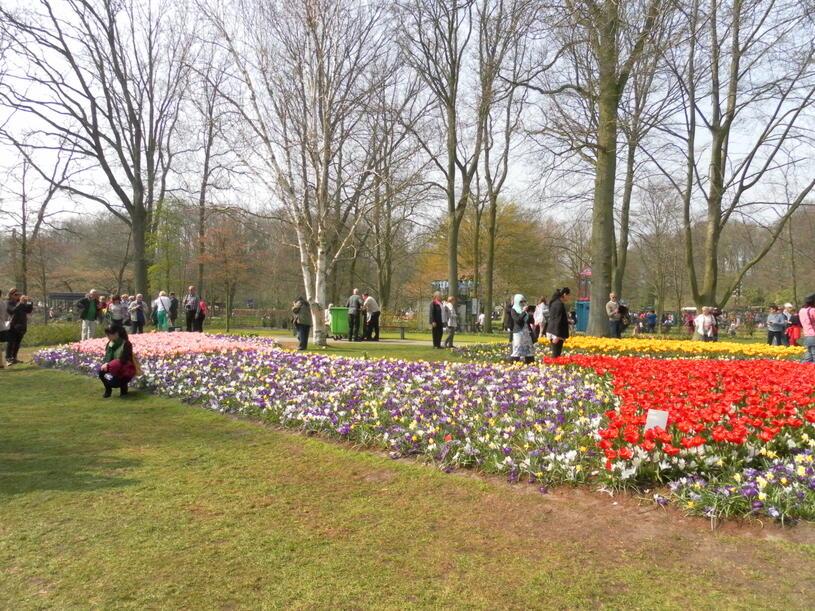 Le Parc Floral ouvert seulement 2 mois dans l'année