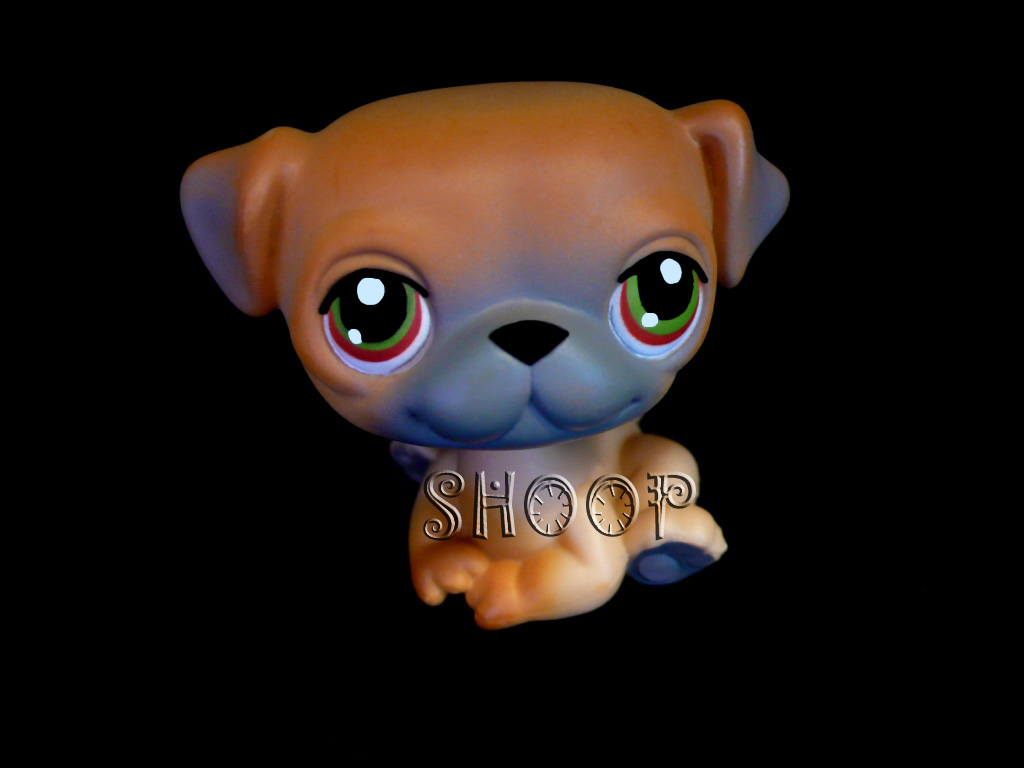 LPS 0002
