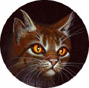 Étoile du Tigre - Tigerstar