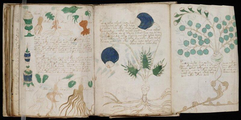 Le Manuscrti de Voynich