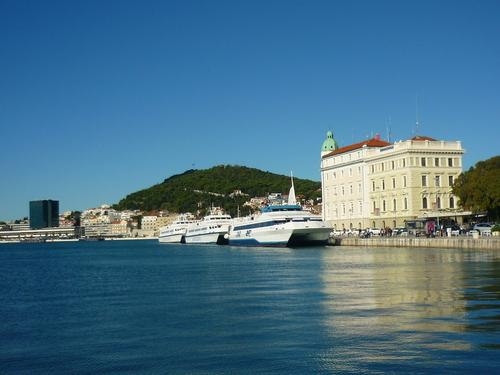 Tortue en Croatie