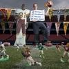 Peter Baroody : stades NFL