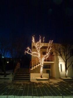 29 décembre Jökulsárlón
