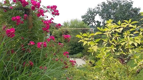 Jardins d'ailleurs...