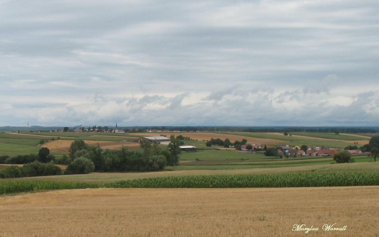 Kochersberg : Dauendorf (67)