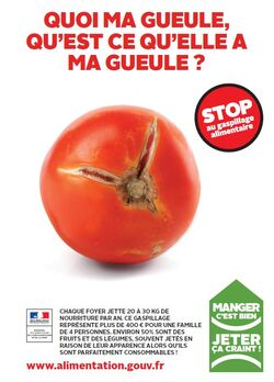 action contre le gaspillage: la tente des glaneurs!
