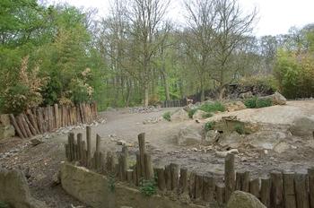 Zoo Osnabruck d50 2012 148