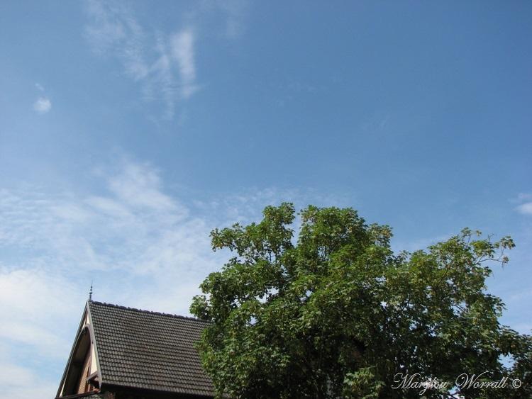 Ciel d'Alsace 467