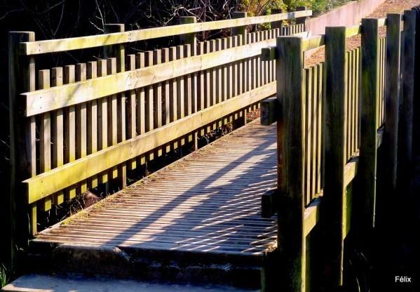 Z02 - Petit pont