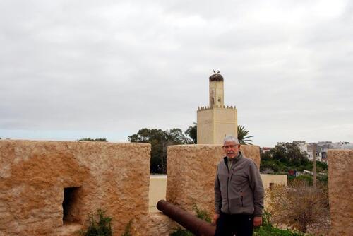 Les ruines et les canons