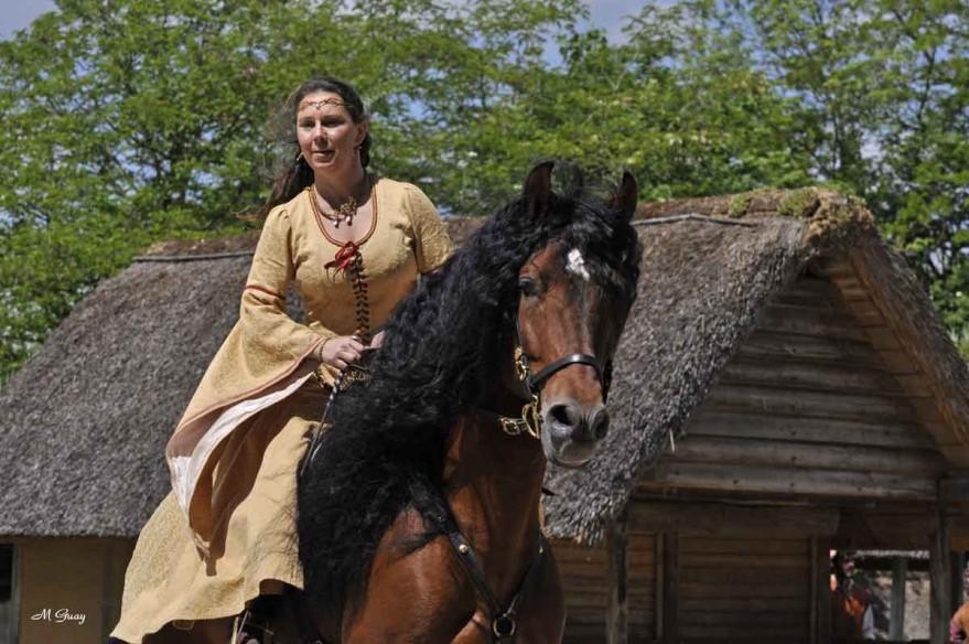 cheval-cavaliere-3813.jpg