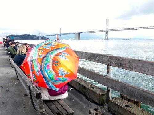 Parapluies et ponts