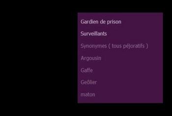 Dans les couloirs . encart thème surveillants de prison