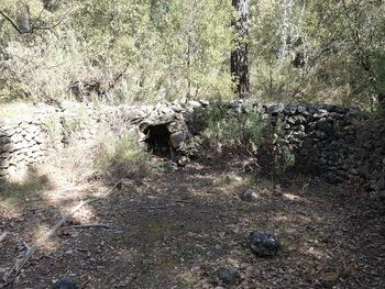 """Une centaine de mètres plus loin, un autre """"enclos"""", avec, en face de l'entrée, une niche réservée dans l'enceinte"""
