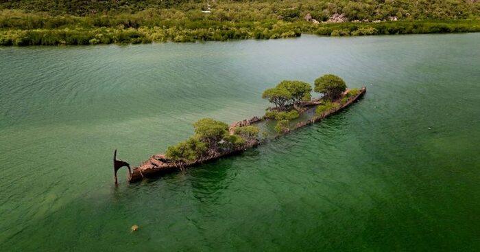 Un naufrage de 100 ans abandonné en Australie est récupéré par la nature