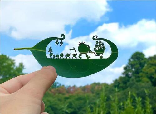 Sculptures sur feuilles