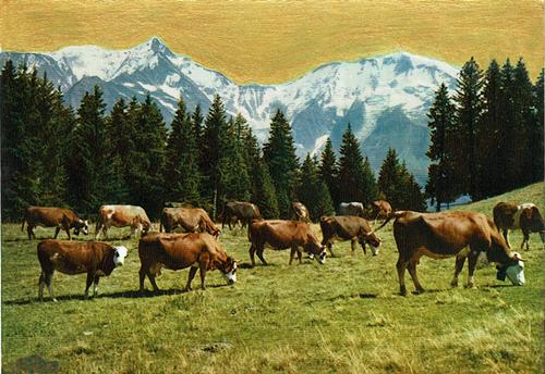 Vaches dans la montagne sur ciel doré