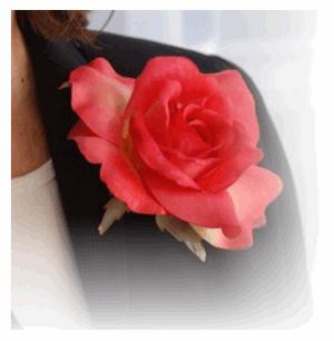 La fille à la rose