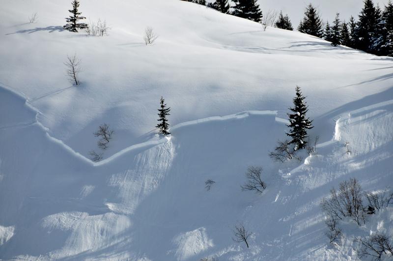 Balade d'hiver : Joux-Plane