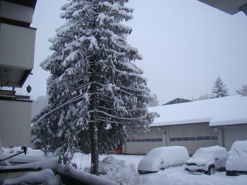 de la neige de la neige ca y est enfin !!!