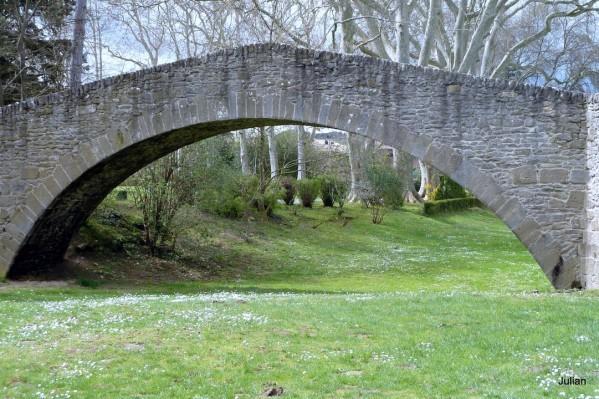 002---pont-et-platanes.JPG