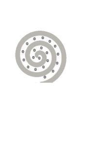 spirale2.jpg