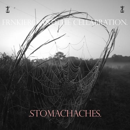 FrankIeroAndTheCelebrationStomachachesalbumcoverartworkpackshotThrashHits