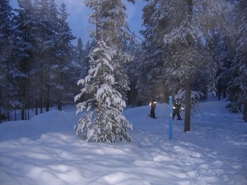 Bonjour Laponie (suite)