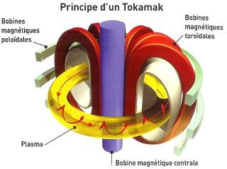http://lancien.cowblog.fr/images/Sciences/tokamak.jpg