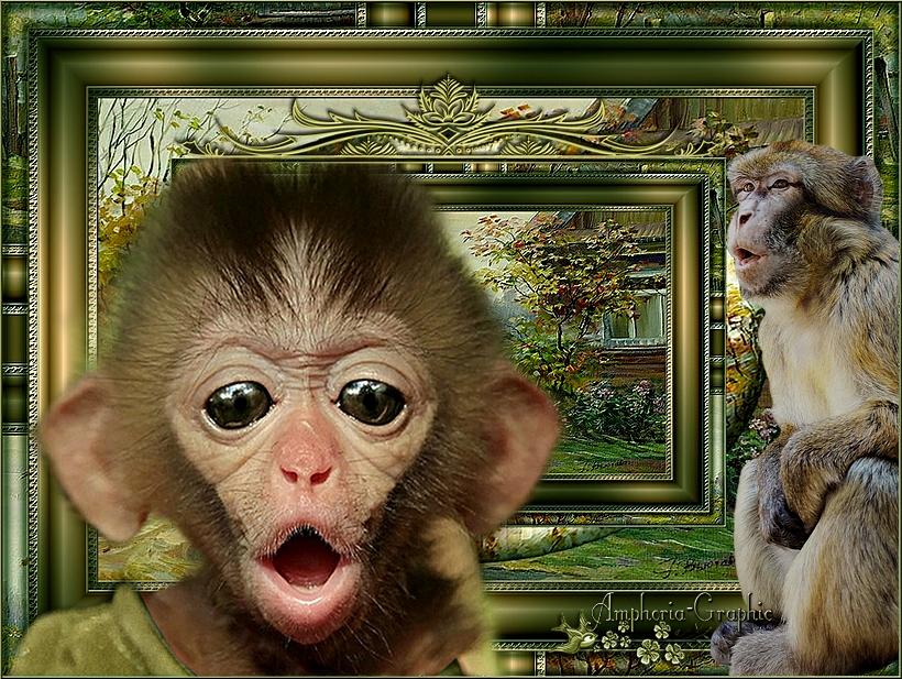 Trois petits singes lavés leurs linges dans un grand verre d'eau rempli jusqu'en haut...