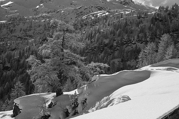 neige-2011 3036
