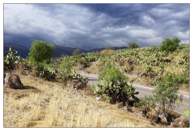 Paysages environ Ayacucho