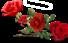 ♥ Au bal de la rose ♥