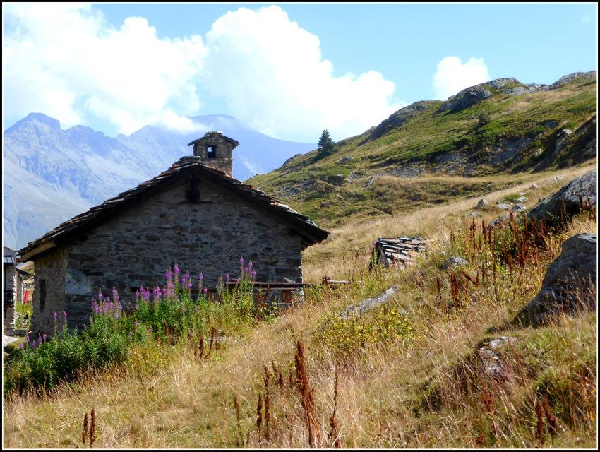 Evasion au Petit Mont-Cenis ( Hte Maurienne ) été 2016 : N°2