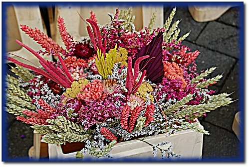 marche-fleurs-1.JPG