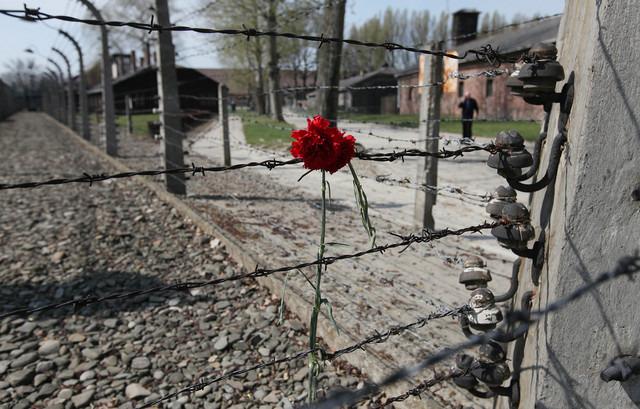 Le comptable d'Auschwitz jugé 70 ans après les faits