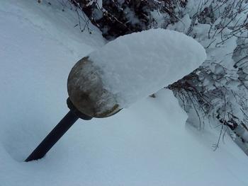 lutin des neige