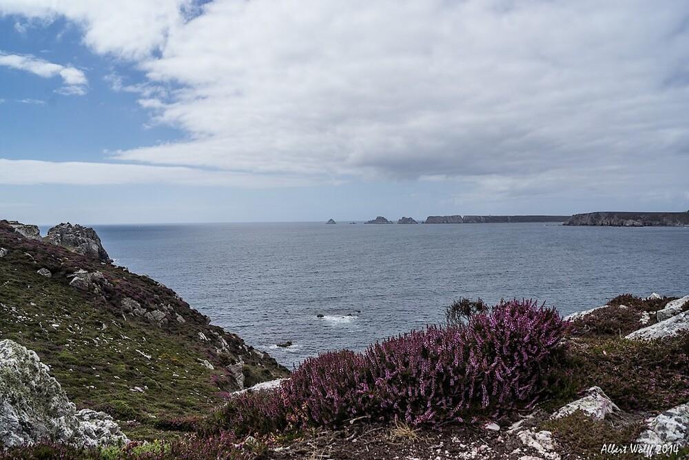 Bretagne  -  9 août  2014 - Dans  lequel on fait des pointes...