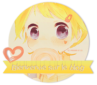 "Déco' ""Bienvenue sur la blog"""