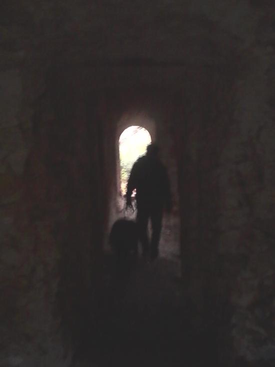 visiteur au fenestron